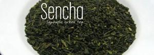 Teh Sencha